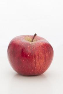 Apfelsorten in österreich